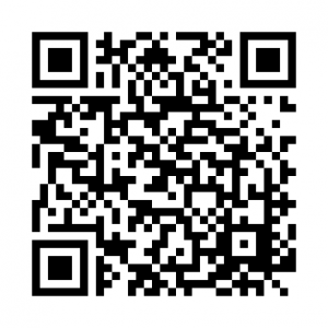 Eastbourne Roller Disco Birthday Party QR Code